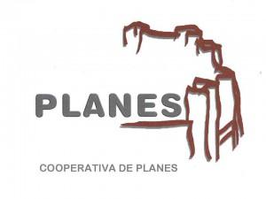 0.0.9 logo planes